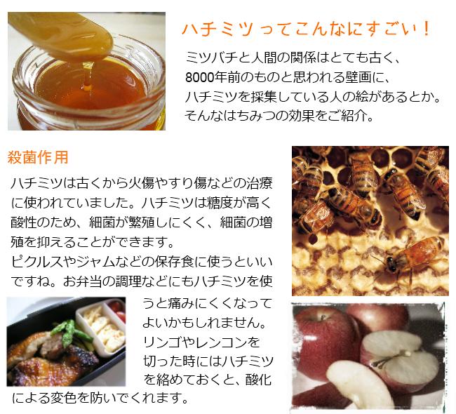 ハチミツに期待する効果。ハチミツってやるヤツです。