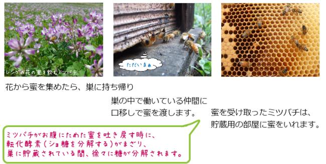 ミツバチが一生懸命働いて