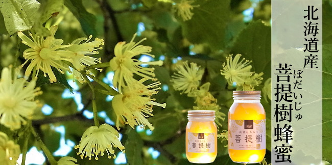 北海道産菩提樹(ぼだいじゅ)蜂蜜