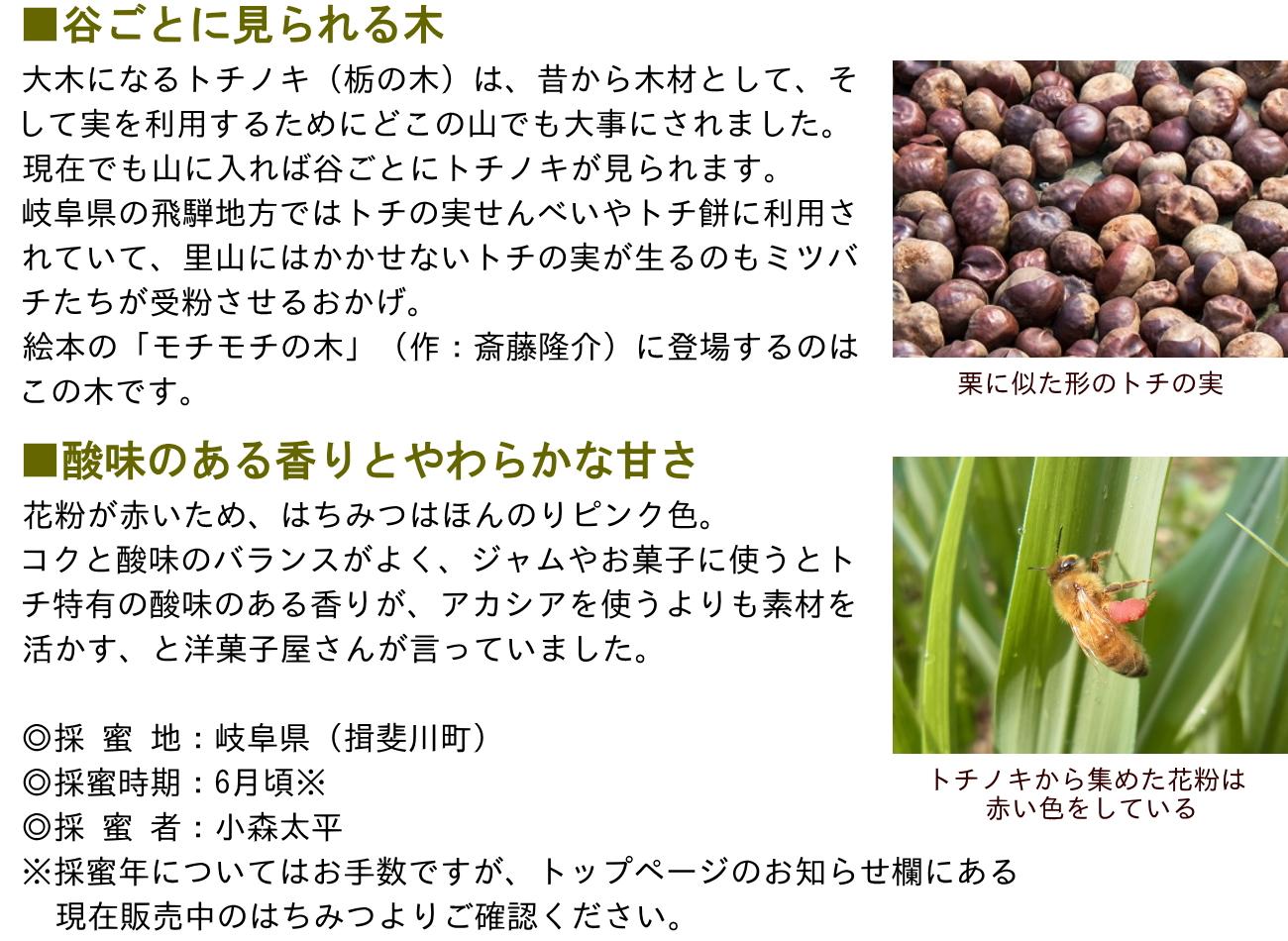 ■谷ごとに見られる木 大木になるトチノキ(栃の木)は、昔から木材として、そして実を利用するためにどこの山でも大事にされました。現在でも山に入れば谷ごとにトチノキが見られます。岐阜県の飛騨地方ではトチの実せんべいやトチ餅に利用されていて、里山にはかかせないトチの実が生るのもミツバチたちが受粉させるおかげ。絵本の「モチモチの木」(作:斎藤隆介)に登場するのはこの木です。■フローラルな香りとやわらかな甘さ 花粉が赤いため、はちみつはほんのりピンク色。コクと酸味のバランスがよく、ジャムやお菓子に使うとトチ特有の酸味のある香りが、アカシアを使うよりも素材を活かす、と洋菓子屋さんが言っていました。◎採 蜜 地:岐阜県(揖斐川町)◎採蜜時期:6月頃※◎採 蜜 者:小森太平※採蜜年についてはお手数ですが、トップページのお知らせ欄にある現在販売中のはちみつよりご確認ください。栗に似た形のトチの実 トチノキから集めた花粉は赤い色をしている